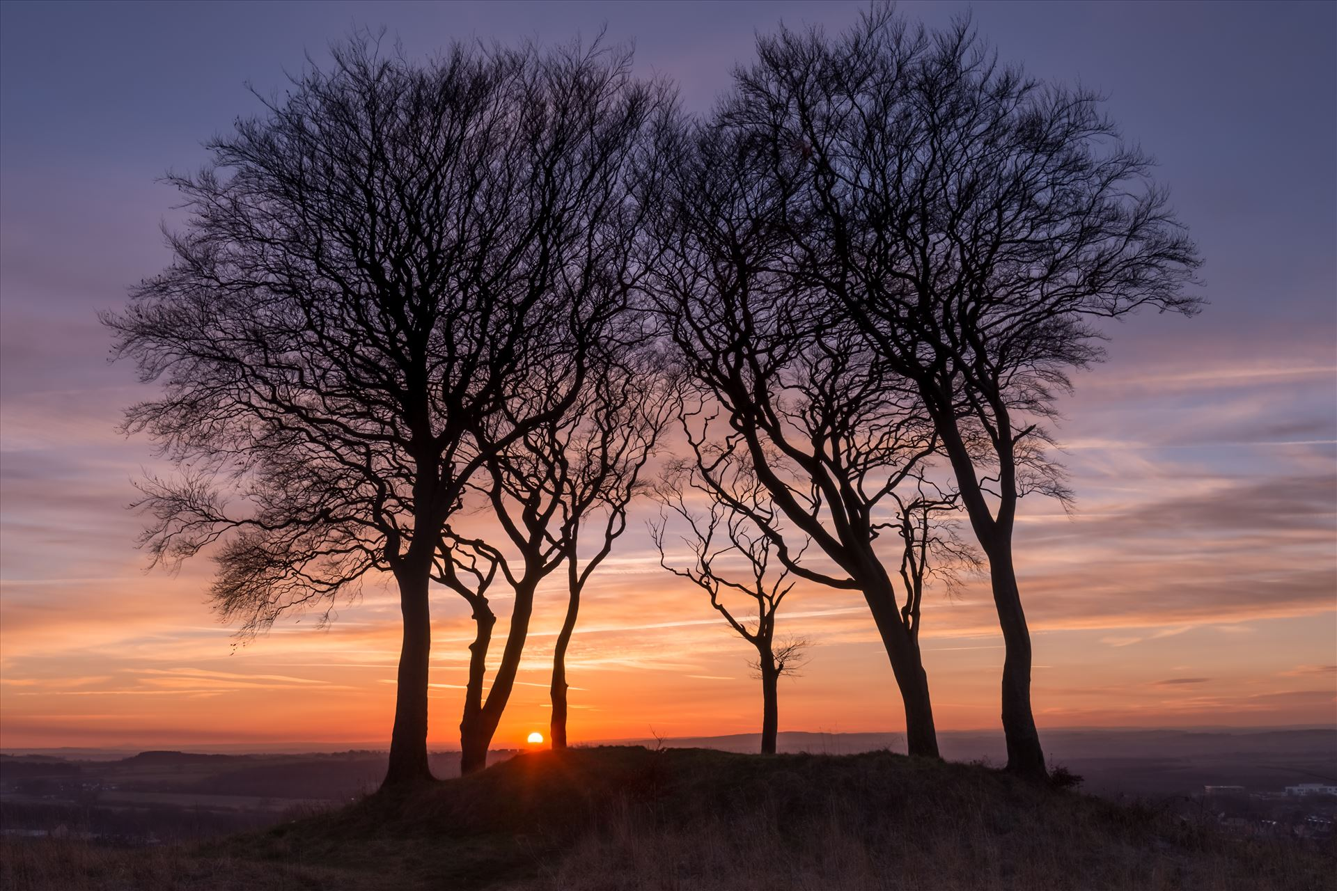 Sunset at Copt Hill - Copt Hill is an ancient burial ground near Houghton-le-Spring. The site is marked by six trees. Presumably there used to be a seventh tree, as they are known as the Seven Sisters. by philreay