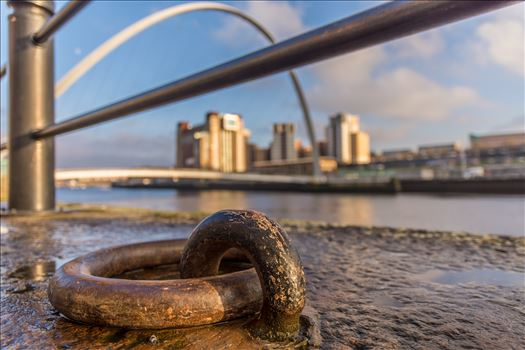 On the banks of the Tyne -