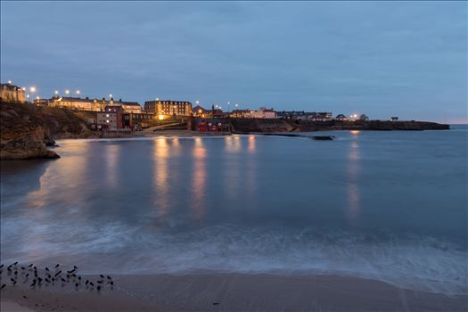 Cullercoats bay at blue hour -