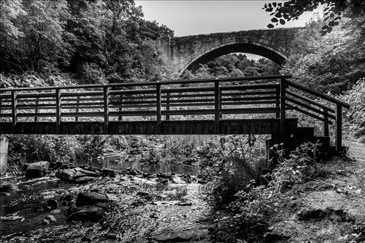 The Causey Arch is a bridge near Stanley in County Durham. It is the oldest surviving single-arch railway bridge in the world. When the bridge was completed in 1726, it was the longest single-span bridge in the country.